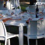 כסאות אוכל - חרמון 2